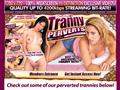 Tranny Perverts